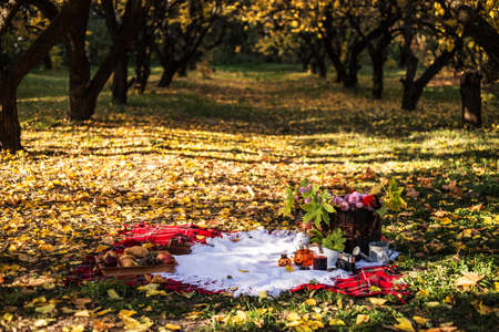 Basket with leaves and pumpkin candle., fruit and pastries on the litter in the autumn forest. Halloween picnic