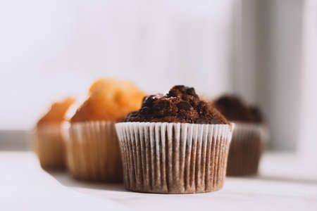 Beautiful vanilla and chocolate muffins with pieces of chocolate on a white background with place for text