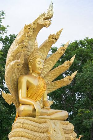 Buddha statue with nine headed serpent,Thailand temple