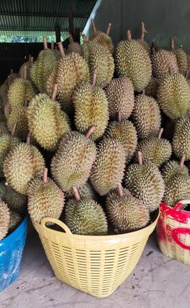 Durian is in the basket.