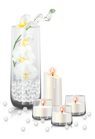 Branch of white phalaenopsis orchid or moth orchid flowers in a clear glass, candles with flame and reflection on the floor. Vector illustration on white background.
