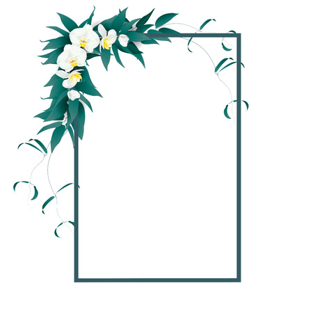 Frame for text decorated with summer green leaves and tropical luxury orchid named phalaenopsis or moth orchid on white background. Vector illustration.