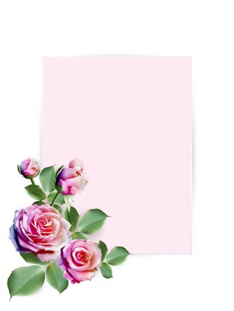 Sweet pink paper for your text decorated with colorful rainbow roses with leaves on white background. Vector illustration.
