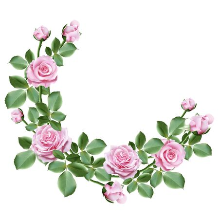 Realistic rose flowers, a bouquet of sweet pink roses with leaves on white background. Vector illustration.