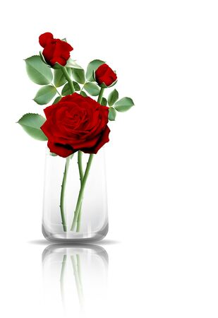 Red roses in a clear glass with reflection on the floor. Vector illustration on white background.