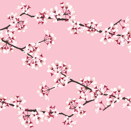 Cherry blossom branches on pink