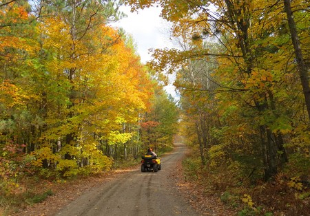 ATV all terrain vehicle on wooded road in Autumn Stok Fotoğraf