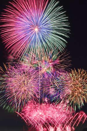 Fireworks display festival ath Showa national park