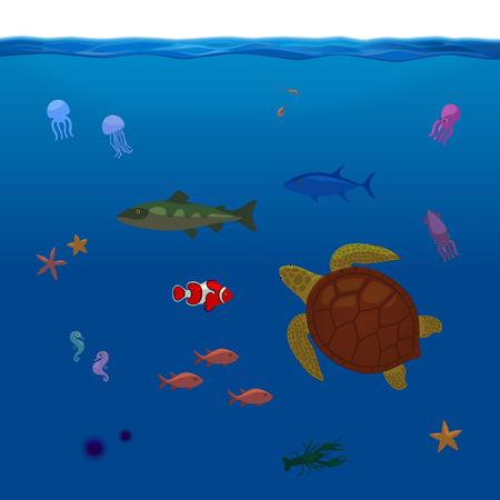big clown fish: Underwater Inhabitants Sea Life Part 1