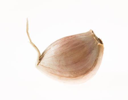 isoleted: single garlic isoleted