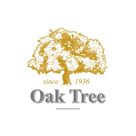 Oak Tree Logo Ilustração