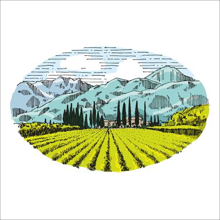 Vignoble vintage rétro main dessin illustration EPS10 Banque d'images - 83251324