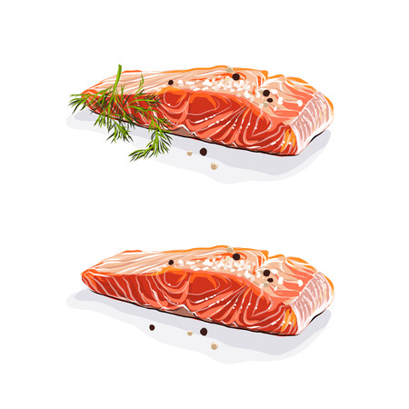 Salmon meat. Salmon steaks with dill isolated on white background. Vector illustration