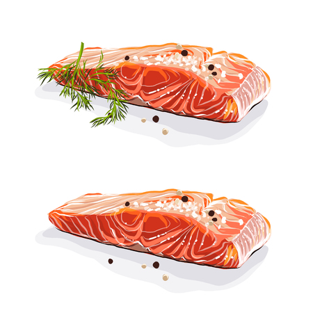 Salmon steak with dill isolated vector hand drawn illustration EPS 10