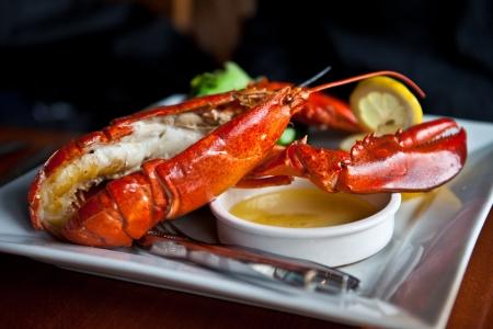 lobster: 야채와 신선한 구운 랍스터 스톡 사진