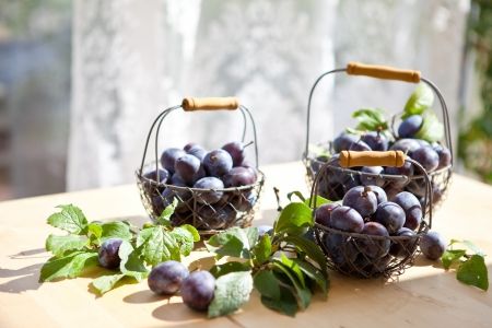 Fresh ripe plums in vintage mesh baskets
