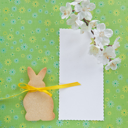 easter cookie: Cookie in the shape of an easter bunny on green Stock Photo