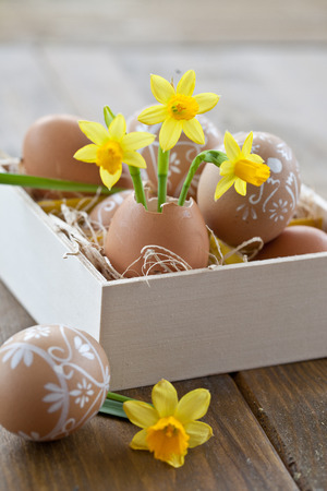 Yellow narcissus in egg shell and painted easter eggs photo