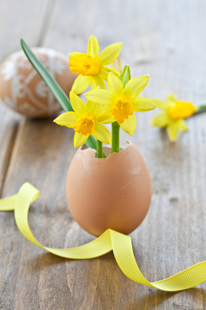 tojáshéj: Yellow narcissus in egg shell on rustic wood