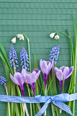 Fresh spring flowers on green rustic wooden background Stock Photo - 26562912