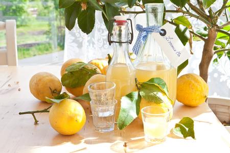 Zelfgemaakte limoncello gemaakt van rijpe biologische citroenen