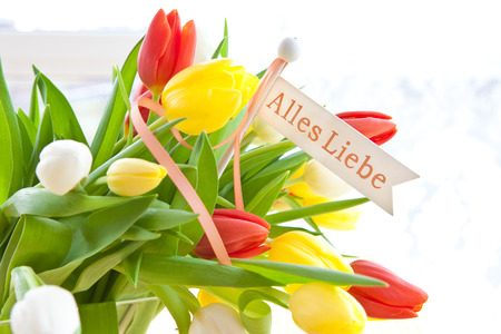 Liebe: Fresh colorful tulips with a Alles LIebe tag
