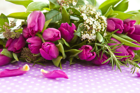 Bouquet of Fresh purple tulips and blooming branches