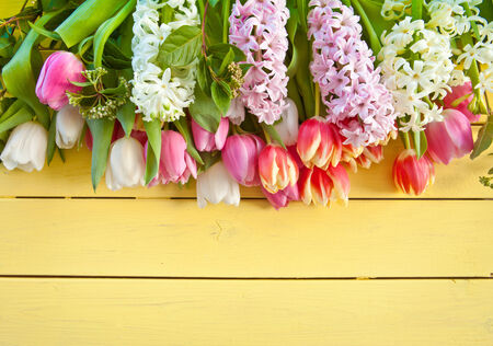 lowers: Fresh colorful spring lowers on yellow wooden boards
