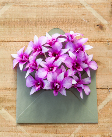 Colorful  flowers in envelope, flower delivery concept Stockfoto