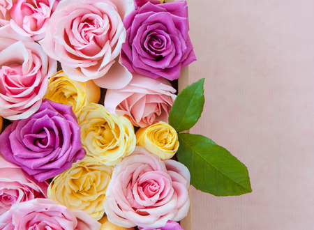 mothersday: Fresh roses in different colors as a background