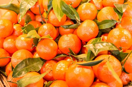 Fresh organic clementines with leaves as a background Stock Photo