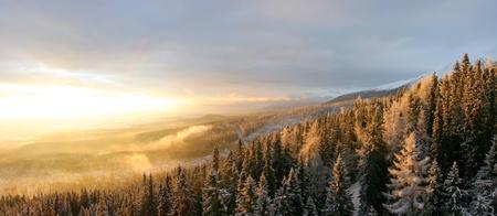 슬로바키아의 풍경과 눈 스톡 콘텐츠