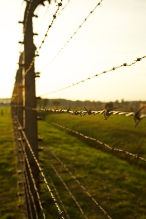 treblinka: Barbed wire fence in Auschwitz II-Birkenau Concentration Camp in Poland near Krakow.
