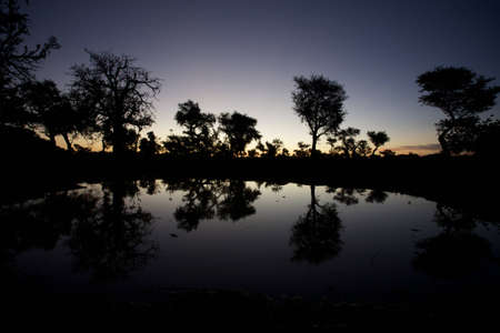 ethnology: Early in the morning, sunrise in the Dogons Land on the lake and view on the mosque of the village.