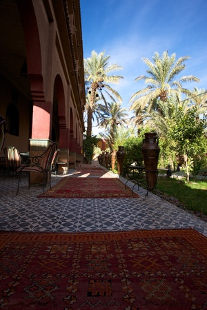 Garden of a riad in Ouarzazate with palm trees, red carpets and a blue sky