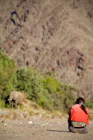 Woman sitting on the floor with camera and observing elephant in the Skeleton Coast Desert late afternoon photo