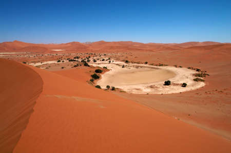 Dune sea of the Namib desert during a hot day Stock Photo - 12660985