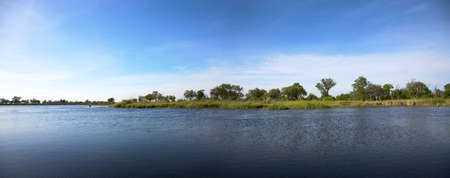 Landscape of water and grass in the Okavango Delta in North of Botswana. The Delta is the biggest sweatwater reservoir in this area and the water is absolutely clean Stock Photo - 12660748