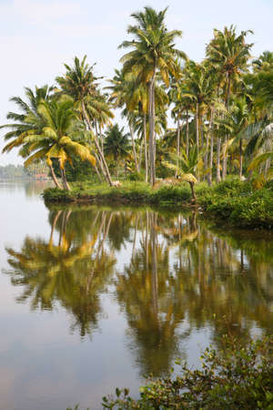 Canals in the  Back Waters in Kerala, India. photo