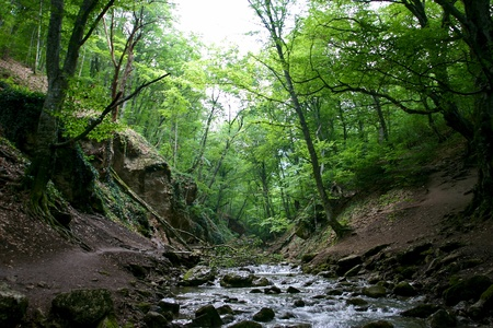 Cascades in spring forest in Crimea in Ukraine Stock Photo - 12797167