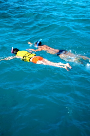 Snorkeling in the Indian ocean - Maldives photo
