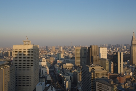 42nd: Panoramic view of central Tokyo, taken from the 42nd floor in Shinjuku district.