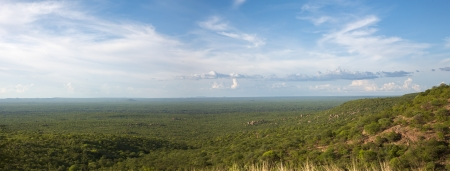 View of the forest, the horizon is Angola, the Kunene River creates the natural border between Angola and Namibia.2010