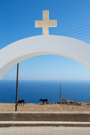 house donkey: Orthodox Cross and donkeys eating in front of the Aegan sea.The cross is from the roof of Agios Ioanis Prodromos Church, Ano Mera, Pano Meria Village, Folegandros.