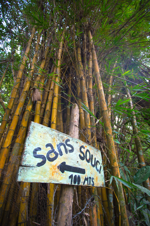 stating: Sign stating no problem in French with giant bamboo tree in the background. Minca, Colombia 2014.