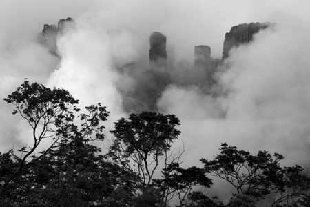 vena: Kerepakupai Vena or Angel Falls, Salto Angel in the clouds in black and white. The worlds highest waterfalls. Bolivar State. Venezuela, Stock Photo