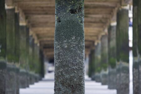 pilasters: Detail of the pier of Zeebrugge, near Ostende on the North Sea in Belgium. Green pilasters aligned in a row. Stock Photo