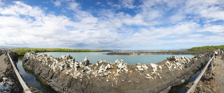 picto: GALAPAGOS ISLANDS, ECUADOR - FEBRUARY 13: Panorama of the lagoon and the nature in a protected and closed area with many iguana nests near Puerto Villamil. Tourists are in the background. Galapagos Islands. Ecuador 2015.