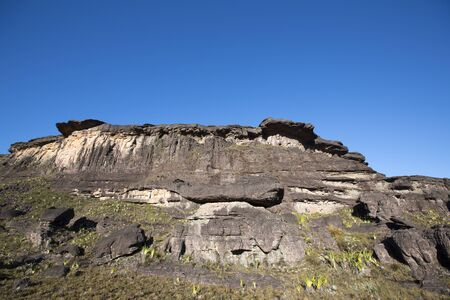 volcanic stones: Landscape at the top of Mount Roraima in the morning with blue sky. Black volcanic stones, and endemic plants. Gran Sabana. Venezuela 2015. Stock Photo