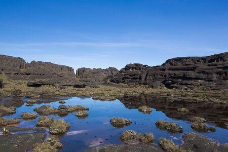 steine im wasser: Landschaft an der Spitze des Mount Roraima am Morgen mit blauem Himmel. Schwarzen vulkanischen Steinen, Wasser und endemische Pflanzen. Gran Sabana. Venezuela 2015. Lizenzfreie Bilder